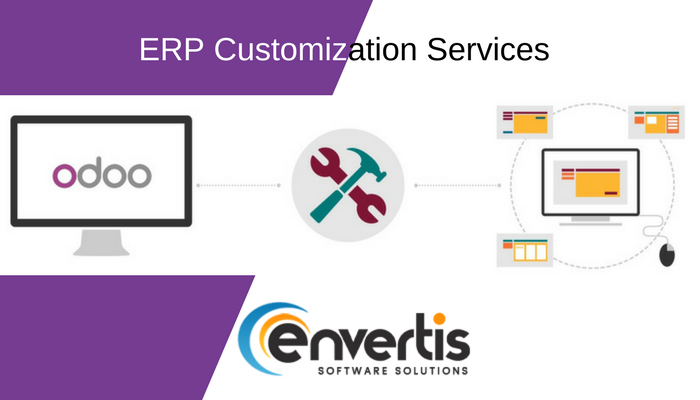 Contact Envertis for Best ERP Software in India