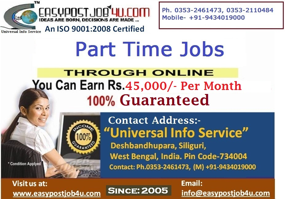 Earn at your Leisure by Working Online