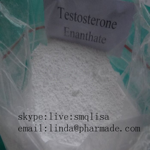 Muscle Building Steroid Hormone Powder Testosterone Enanthate